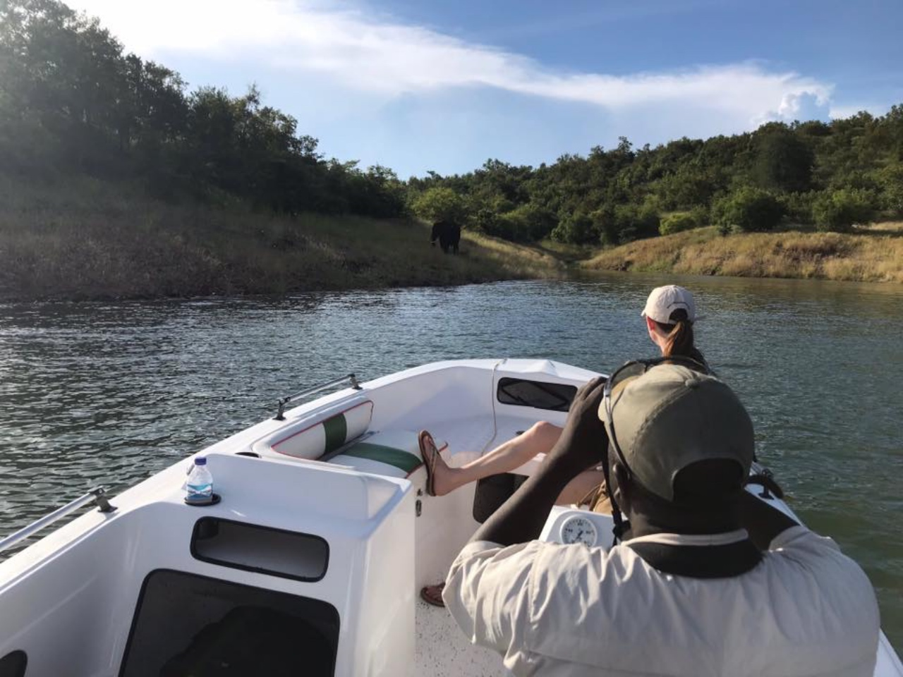 Lucy watching elephants on a Lake Kariba boat cruise