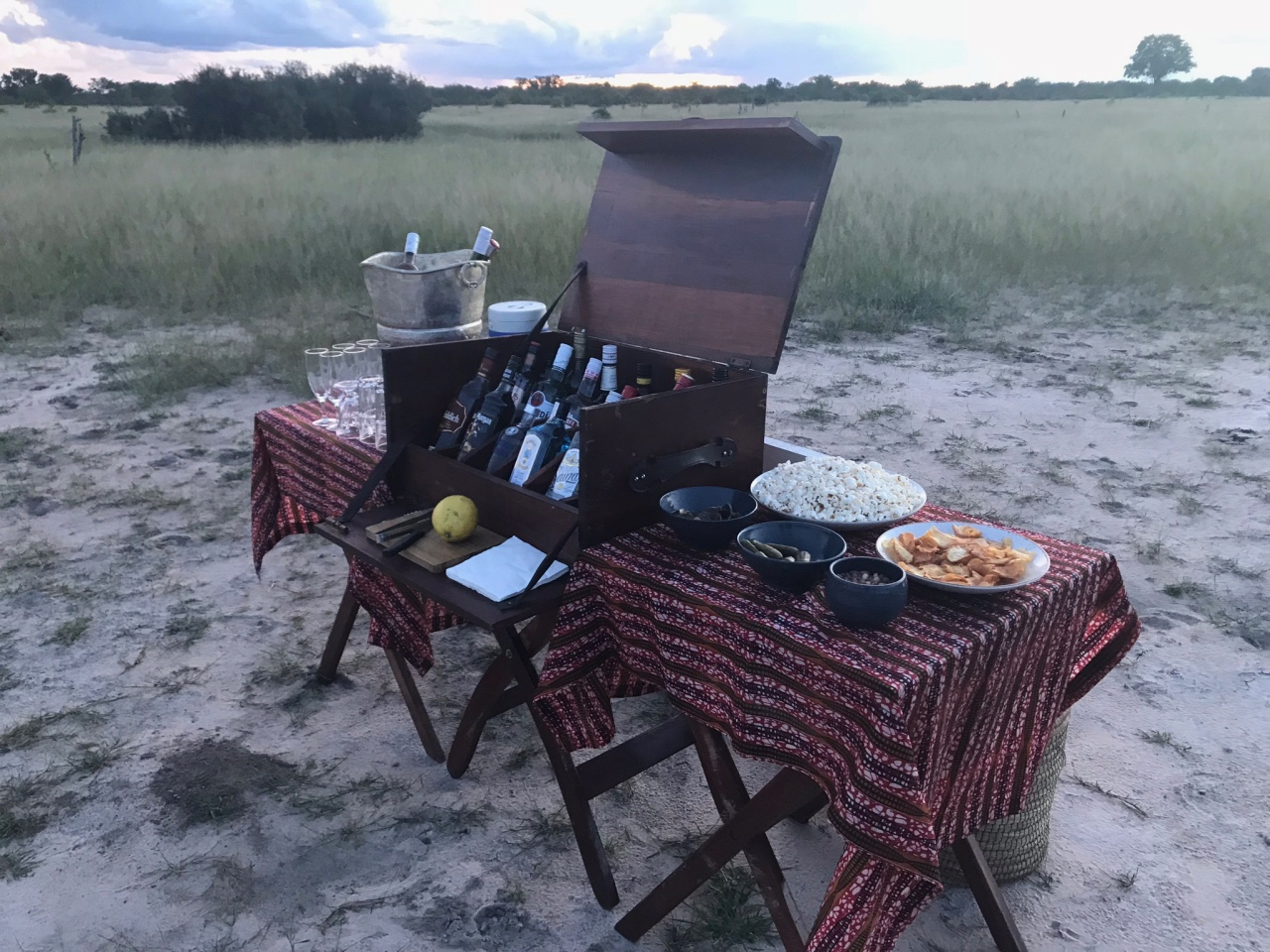 Game drive sundowners done in style at Somalisa Camp