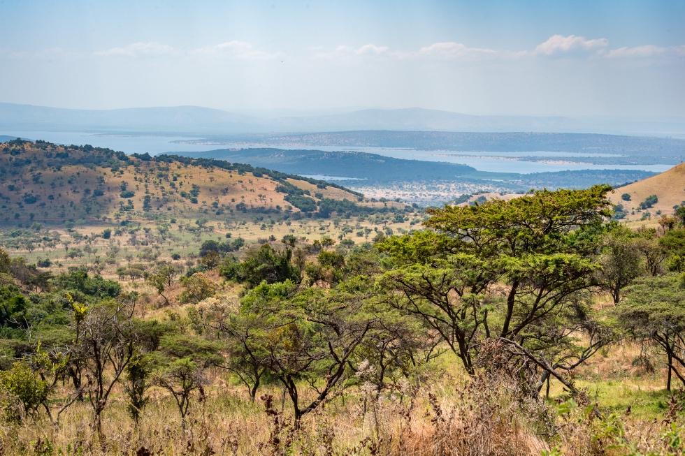 Akagera vistas never to be forgotten