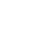 train icon white