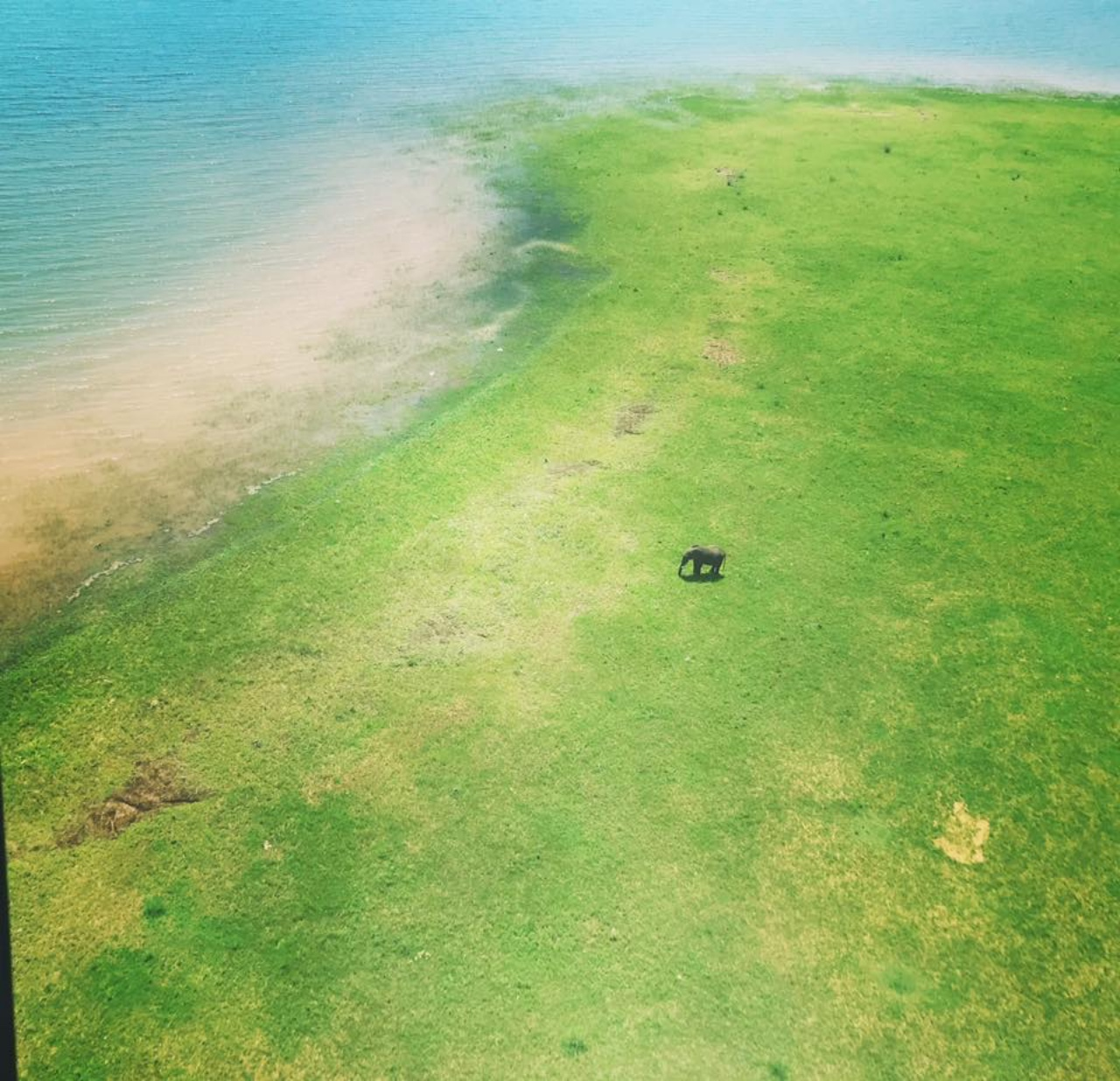 Elephant spotting on the edge of Lake Kariba from the air
