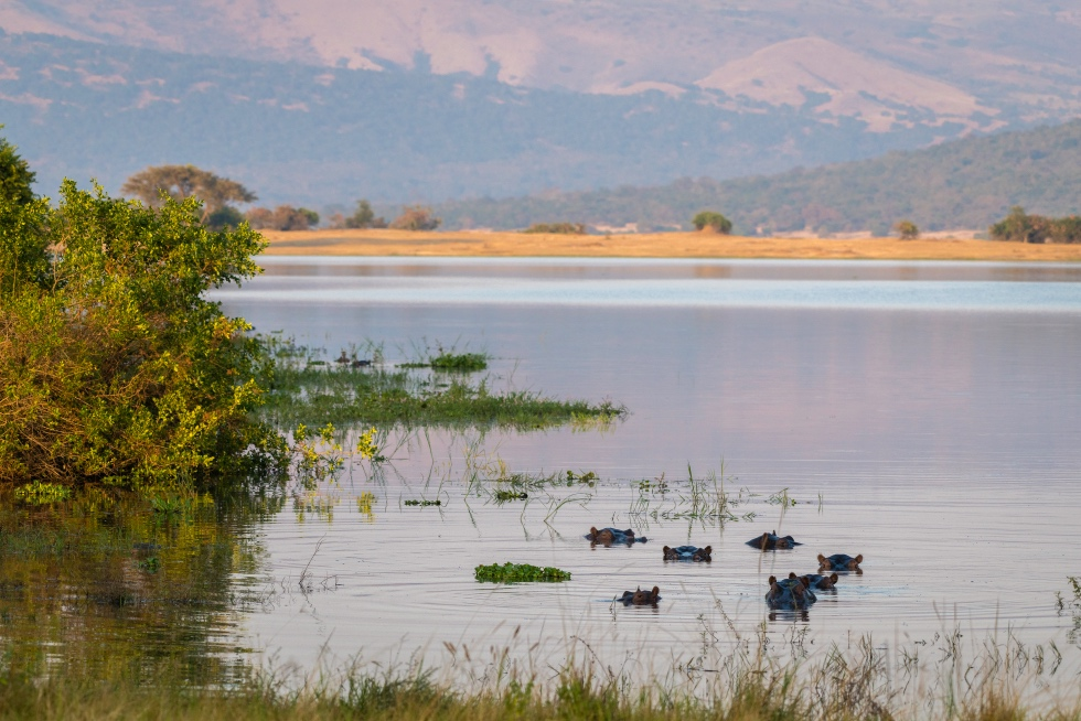 Rolling hills, savannah grassland, and hippo-filled lakes and lagoons to admire at Magashi Camp