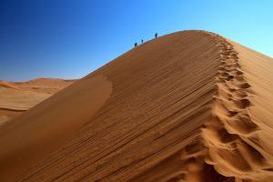 Namib Desert dune climbing